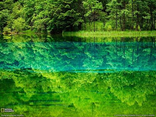 Удивительные виды Земли