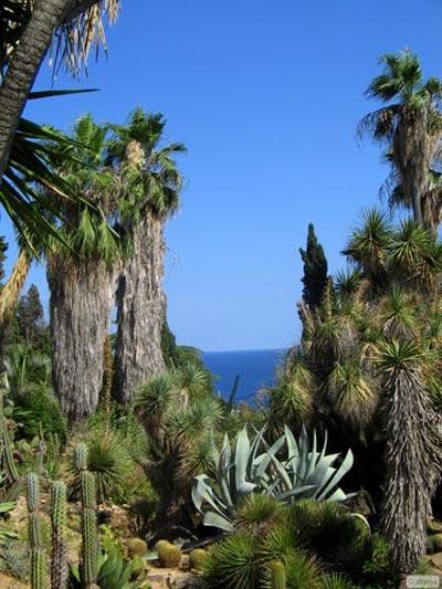 Сад Маримуртра (MariMurtra) в Испании