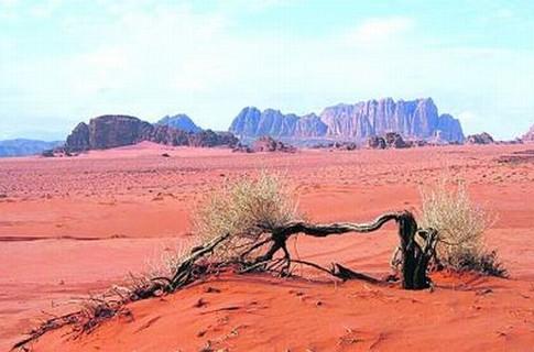 Земле грозит ледниковый период и страшные засухи