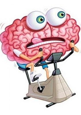 Как работает нейробика?