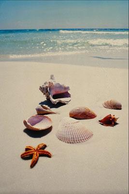 Какие процедуры будут полезны после отдыха на море?