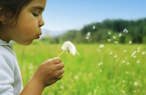 Становимся здоровее, общаясь с природой