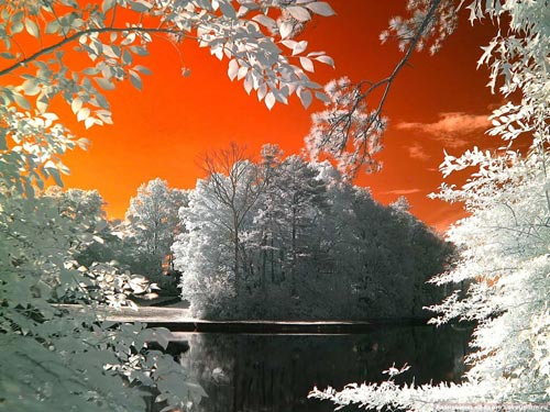 Необычайные инфракрасные фотографии