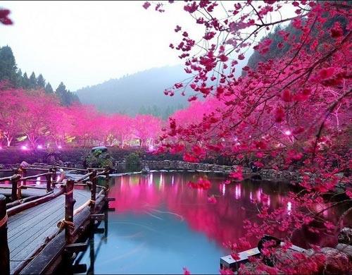 Очень красивые места