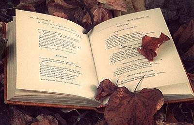 50 главных рекомендаций психотерапевтических книг