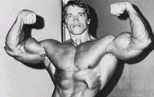 Набираем мышцы, а не жир