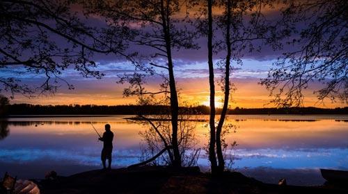 12 кадров, которые очаровали даже профессиональных фотографов
