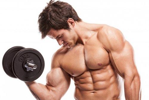 Что нужно употреблять чтобы наростить мышцы