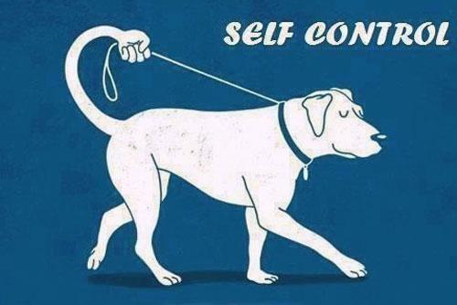 Самодисциплина как развить