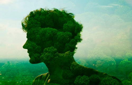 Человек и природа в искусстве доклад 7501